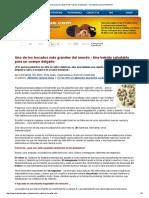 Beneficios Para La Salud de Las Nueces de Pistacho - Incluyendo La Salud Intestinal