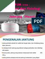 Bab Anatomi Jantung