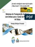 01. DOMINGO FERNANDEZ_STPS Com Ênfase Para o Canal Da Piracema de Itaipu