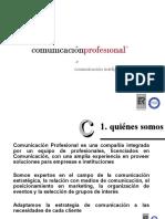 Presentación Comunicación Profesional 2010