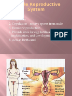 Female Reproductive System.pptx