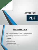 ahmadYani - Mekanisme Pucat