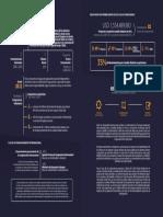 Infografia Del Informe Gflac