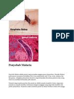 Penyebab Malaria.docx