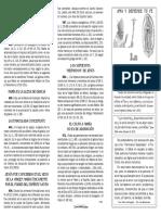 cTF-003 3-La Virgen Maria (Ama y defiende tu fe).pdf