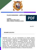 Plan de Negocios Jabón Artesanal