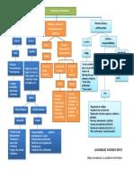 Mapa conceptual La auditoría informática.docx