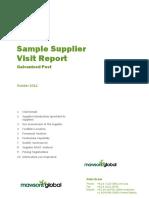 Sample Supplier Visit Report