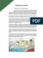 Informe Fisio 3