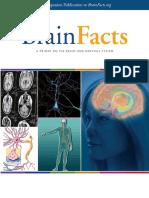 Brain Facts-2012 Year
