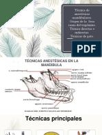 Cirugia Exposicion Tecnicas de Anestesicos