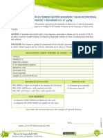 Formulario Auditoria Terreno CPHS DS N° 5469