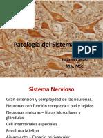 patologadelsistemanervioso.pptx