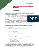 TEMA O-23.pdf