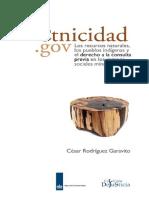 CRodriguez Etnicidad.gov