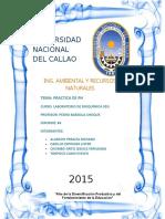 4to Informe Practica de Ph Labo de Bioquimica