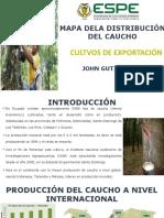 Gutiérrez_mapa Distribución Del Caucho