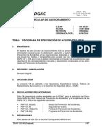 programa.prevencion.accidentes.pdf