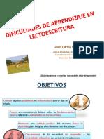 Programas de refuerzo y apoyo educativo en la escritura.pdf