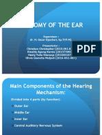 anatomy ear.ppt