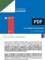 Red Salud Mental 2016 + dceterminantes sociales (2)