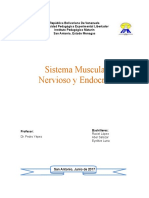 Sistemas Nervioso y Endocrino