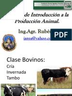 Clase Bovinos