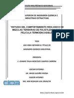 Tesis ECRMTPPT.docx