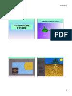 FISIOLOGIA DEL K [Modo de compatibilidad].pdf