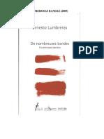 Numerosas-bandas, Ernesto Lumbreras