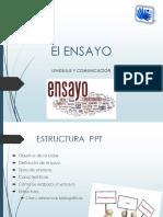 ensayo505066