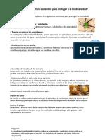 biodiversidad y agricultura sostenible