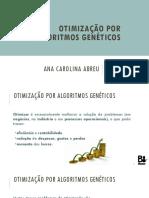 otimização-algoritmos-geneticos-28