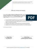 Anexo de Contrato - Patricio Salgado
