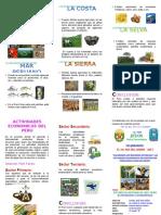 TRIPTICO Recursos Naturales Del Peru