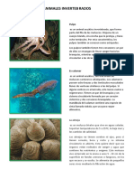 ANIMALES INVERTEB RADOS.docx