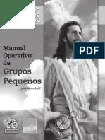 _ManualdelLIDER_FINAL.pdf