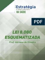 LEI-8080-ESQUEMATIZADA.pdf