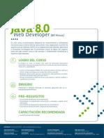 Java 8 0 Web Developer