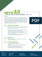 Java 8 0 Advanced Developer