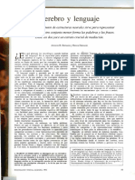 Damasio CEREBRO Y LENGUAJE.pdf