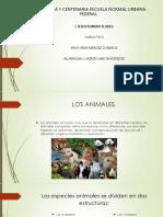 Presentacón de los animales
