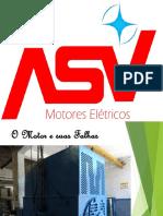 O Motor e suas Falhas.pdf