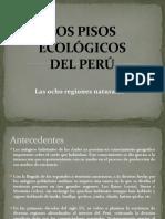 Los Pisos Ecológicos Del Perú