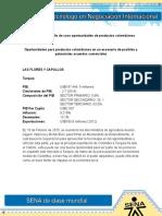 Evidencia 6 Estudio de caso oportunidades de productos colombianos.doc