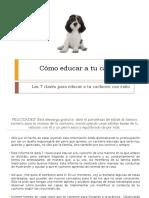 Como educar a tu cachorro.ppsx