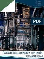 Lp -Técnicas de Puesta en Marcha y Operación de Plantas de Gas
