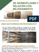 BANCOS DE GERMOPLASMA.pptx