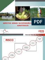 1452620514_3.Intoxicação Exógena por Agrotóxico.pdf