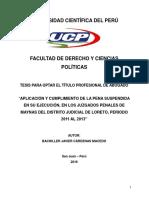 Dcp d t t 2016 Cardenas Aplicación